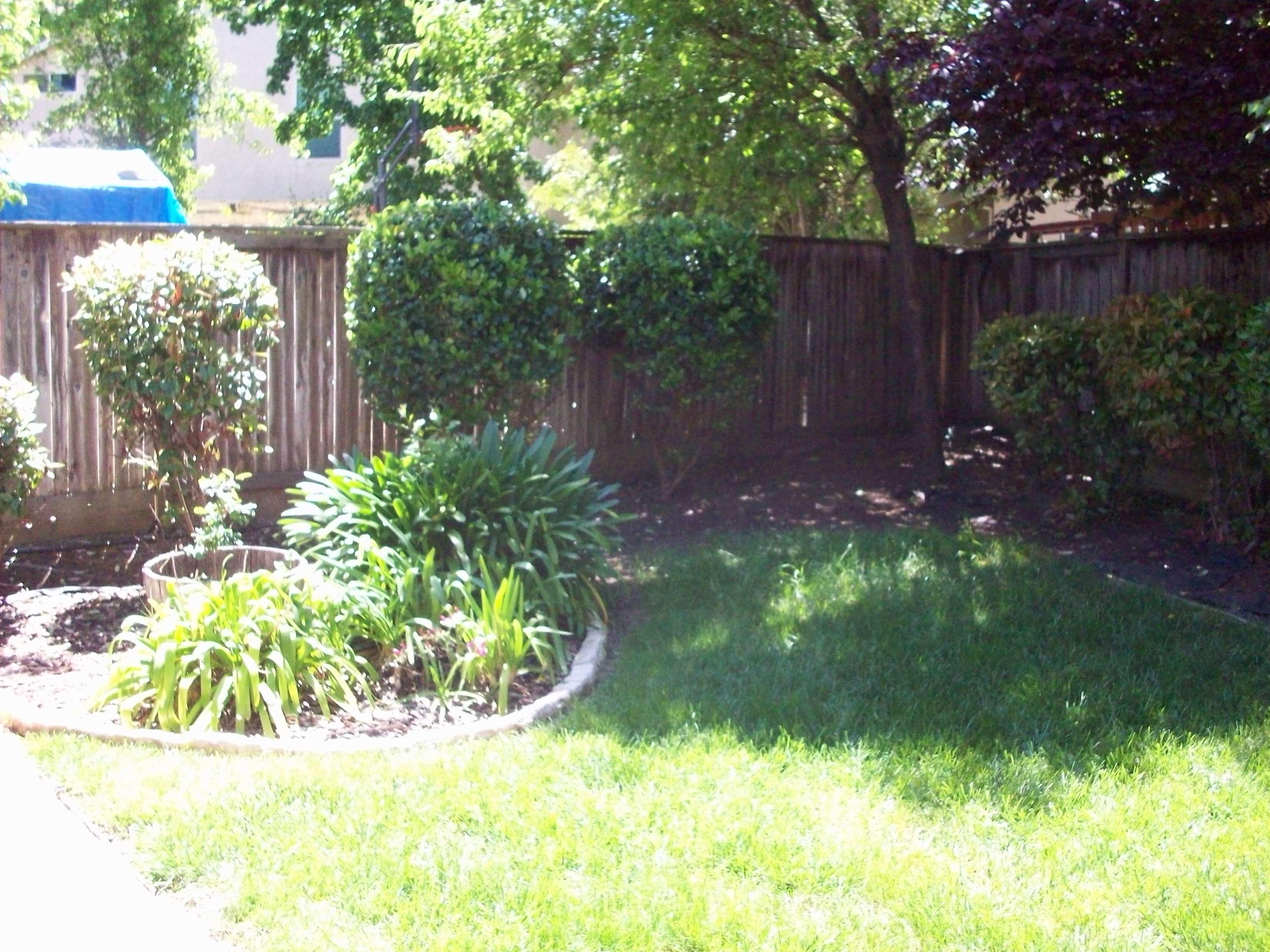 Backyard Landscaping Elk Grove Ca : Windrift lane elk grove ca lakeside home for sale